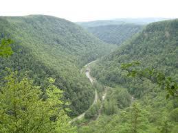 Pennsylvania landscapes images Pine creek gorge aka the pennsylvania grand canyon an jpg