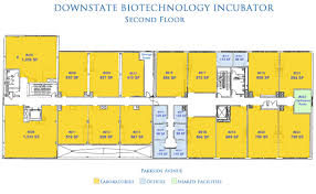 downstate biotechnology incubator