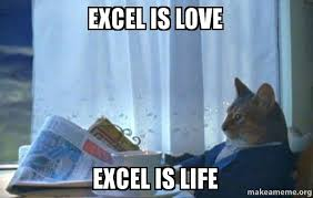 What Is A Meme Exle - excel is love excel is life sophisticated cat make a meme