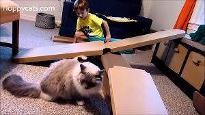 Cardboard Scratchers For Cats 6 Year Old Boy Make A Katris Cardboard Cat Scratcher Fort For