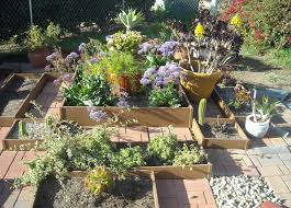 incredible succulent garden decorating design ideas with