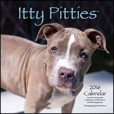 american pitbull terrier merchandise 18 unique gifts for pit bull parents and lovers