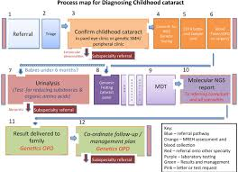 improving diagnosis for congenital cataract by introducing ngs