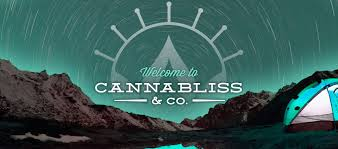 cannabis dispensary portland eugene u0026 springfield or