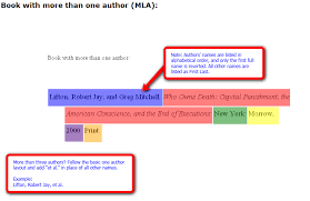 how to cite a source in an essay with more than one author case