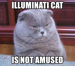 Meme Generator Cat - illuminati cat is not amused serious cat meme generator