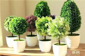 fake trees for home decor fake tree home decor artificial fig decorating for in artificial
