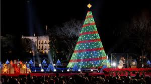 lottery opens for white house u0027s national christmas tree lighting