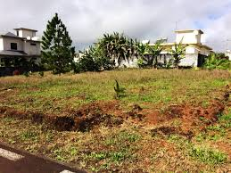land for sale wooton pinewood garden mauritius