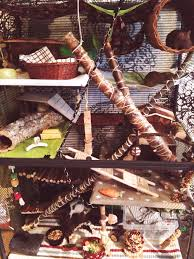 All Living Things Luxury Rat Pet Home by The Rat Mansion Unveiled A House Is Not A Home Without A Pet