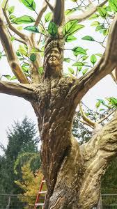 100 symbolism trees d u0027arts the golden tree symbols