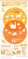 funny images of turkeys in thanksgiving thanksgiving infographic
