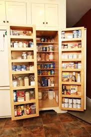 kitchen storage pantry cabinet 29 best kitchen storage solutions images on pinterest kitchen