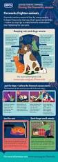 1000 images about pet safety on pinterest thanksgiving for
