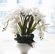white orchids 1set big size real touch artificial orchid flower