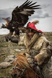 192 best golden eagle عقـــاب ذهبـــي images on pinterest
