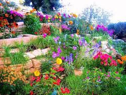 1665 best enjoy flower gardening images on pinterest beautiful