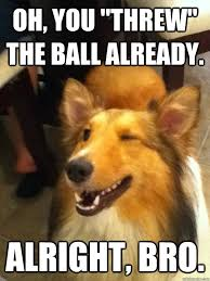Oh You Dog Meme Generator - oh you threw the ball already alright bro implying dog