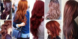 types of red colors shades of red hair color worldbizdata com