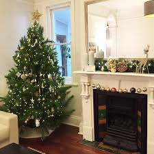 where to buy a real tree in st george sydney kidsize