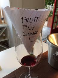 Homemade Fly Trap by Fruit Fly Trap Seasons Of Wine
