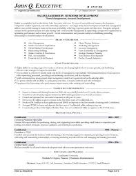 Salesman Resume Examples by Example Sales Resume For Sales Executive Sales Resume Cover