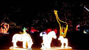 Zoo Lights Houston Hours by Denver Zoo Lights Christmas 2010 Denver Co Youtube