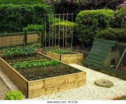 collection compact vegetable garden photos best image libraries