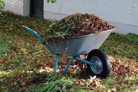 winterize your vegetable garden in 5 easy steps cedarwood