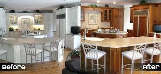 Replacement Kitchen Cabinet Door Replacement Cabinet Doors Adventurism Co