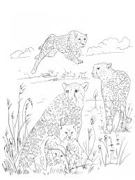 get this free difficult coloring pages 5023