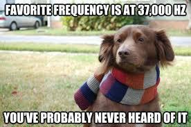 Hipster Dog Meme - hipster dog meme by g10vann1 memedroid