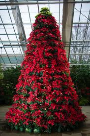Poinsettia Christmas Tree Skirt Best 25 Poinsettia Tree Ideas Only On Pinterest Christmas Tree