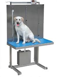 used electric lift table veterinary exam tables