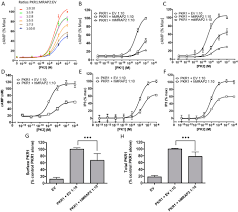 the melanocortin receptor accessory protein 2 promotes food intake