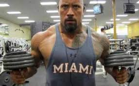 the best chest workout routines get them here