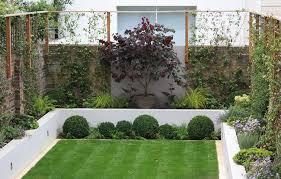 Modern Garden Path Ideas Gardening Assortment Of Lush Plants In A Modern Manicured Yard