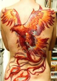 the 25 best phoenix bird meaning ideas on pinterest phoenix