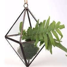 diy micro landscape prismatic greenhouse glass terrarium succulent