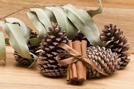 How To Make Glitter Pine Cone Ornaments