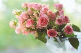 advice for mother u0027s day flower ordersflower press