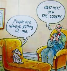 Couch Cartoon Cartoon Pet Therapy Antarctica Journal