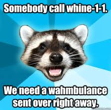 Wambulance Meme - somebody call whine 1 1 we need a wahmbulance sent over right away