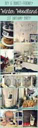 best 10 twin first birthday ideas on pinterest baby first