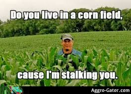 Farmers Only Meme - aggro gator view and comment on images submitted by users image