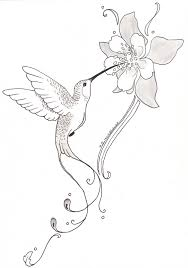 hummingbird with flower tattoo posted by somasekhar at 23 13