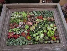 unique garden planter ideas home inspirations