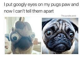 Googly Eyes Meme - googly eyes meme mne vse pohuj
