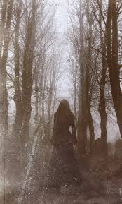 501 best hauntings images on pinterest haunted places ghost