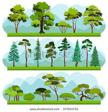 Set Two Types Forest Landscapes Deciduous Stock Illustration